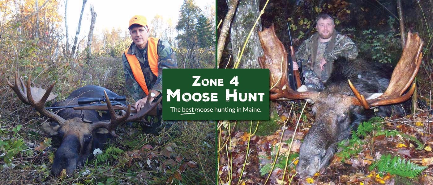 WMD-4-Maine-Moose-Guided Hunt-01-01